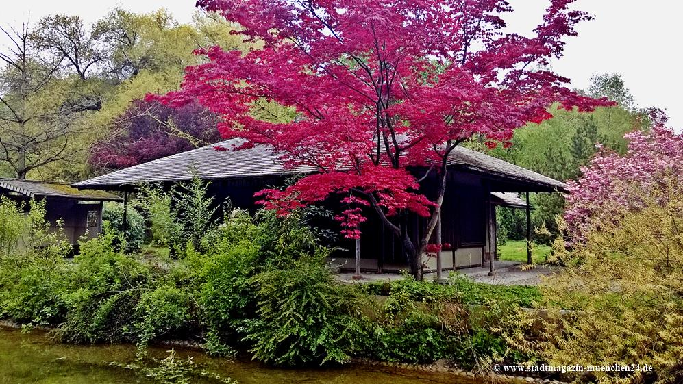Teehaus Englischer Garten München
