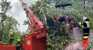 Feuerwehr Einsatz Sturm München Mittersendling umgestürzter Baum