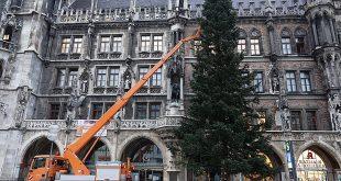 Christbaum München Marienplatz 2020