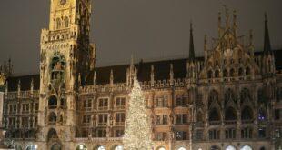 Christbaum leuchtet am Marienplatz