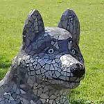 La Louvière wolf e