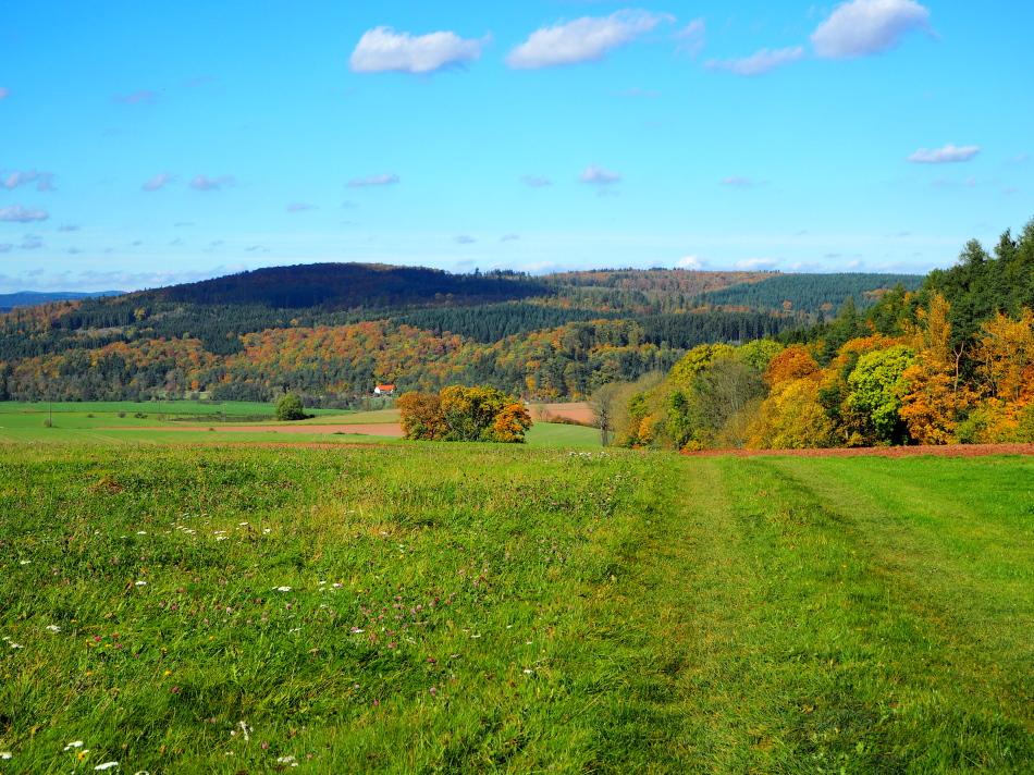 De heuvels rond Dalwigksthal
