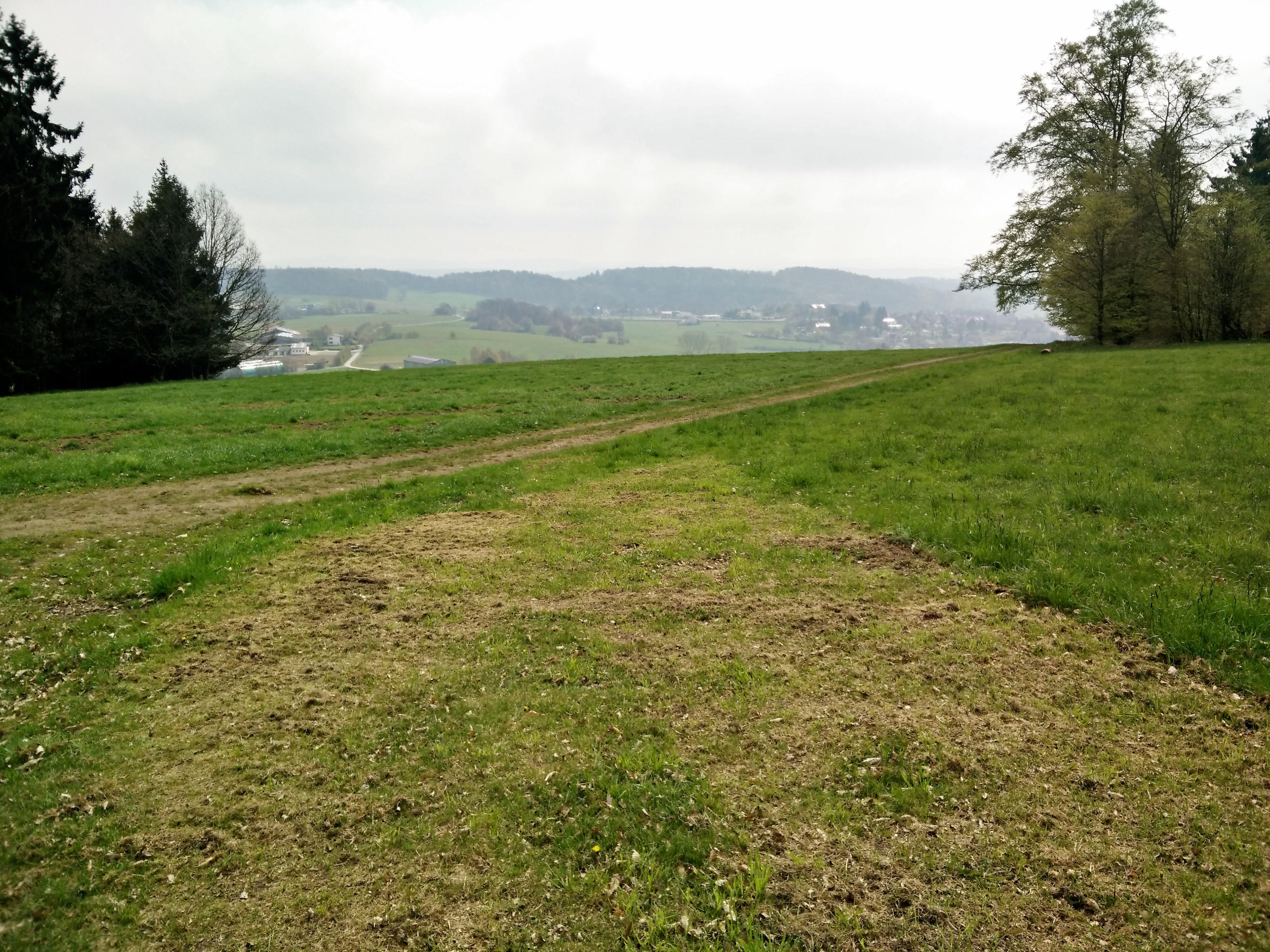 Meiwandeling in omgeving Dalwigksthal
