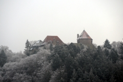 Burcht Lichtenfels in winter