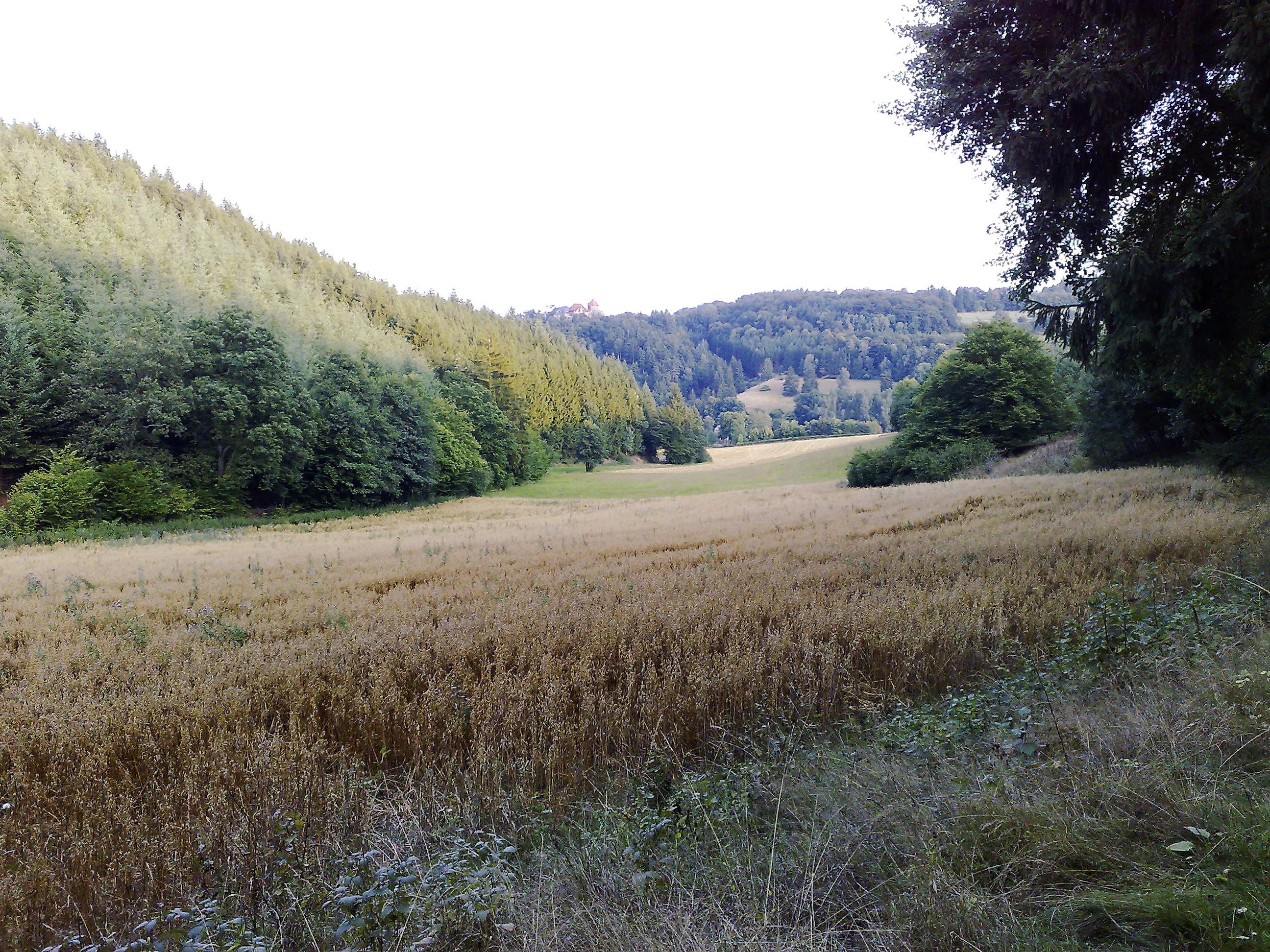 Wandeling Muhlenberg Dalwigksthal