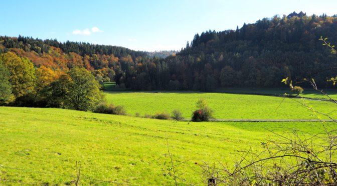 De heuvels rondom Dalwigksthal