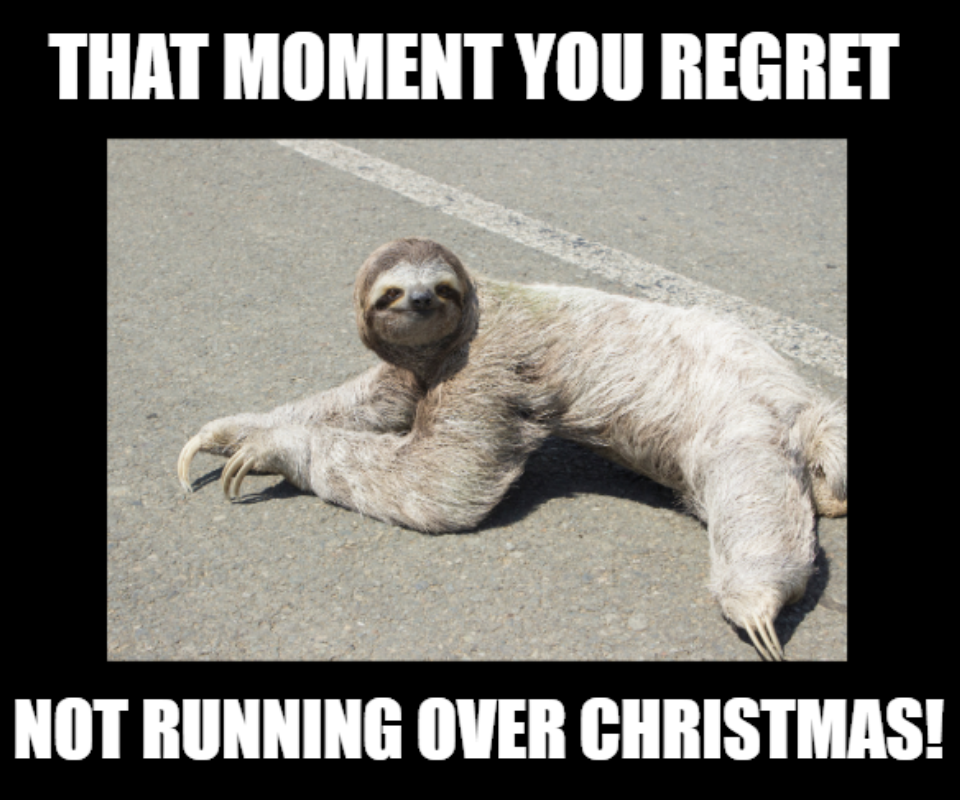 Sloth too tired to walk