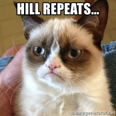 Grumpy Cat thinking of hill repeats