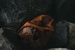 3.Plass-Tema  (Søppel-i-naturen)(Delt)-Martin-Knutson