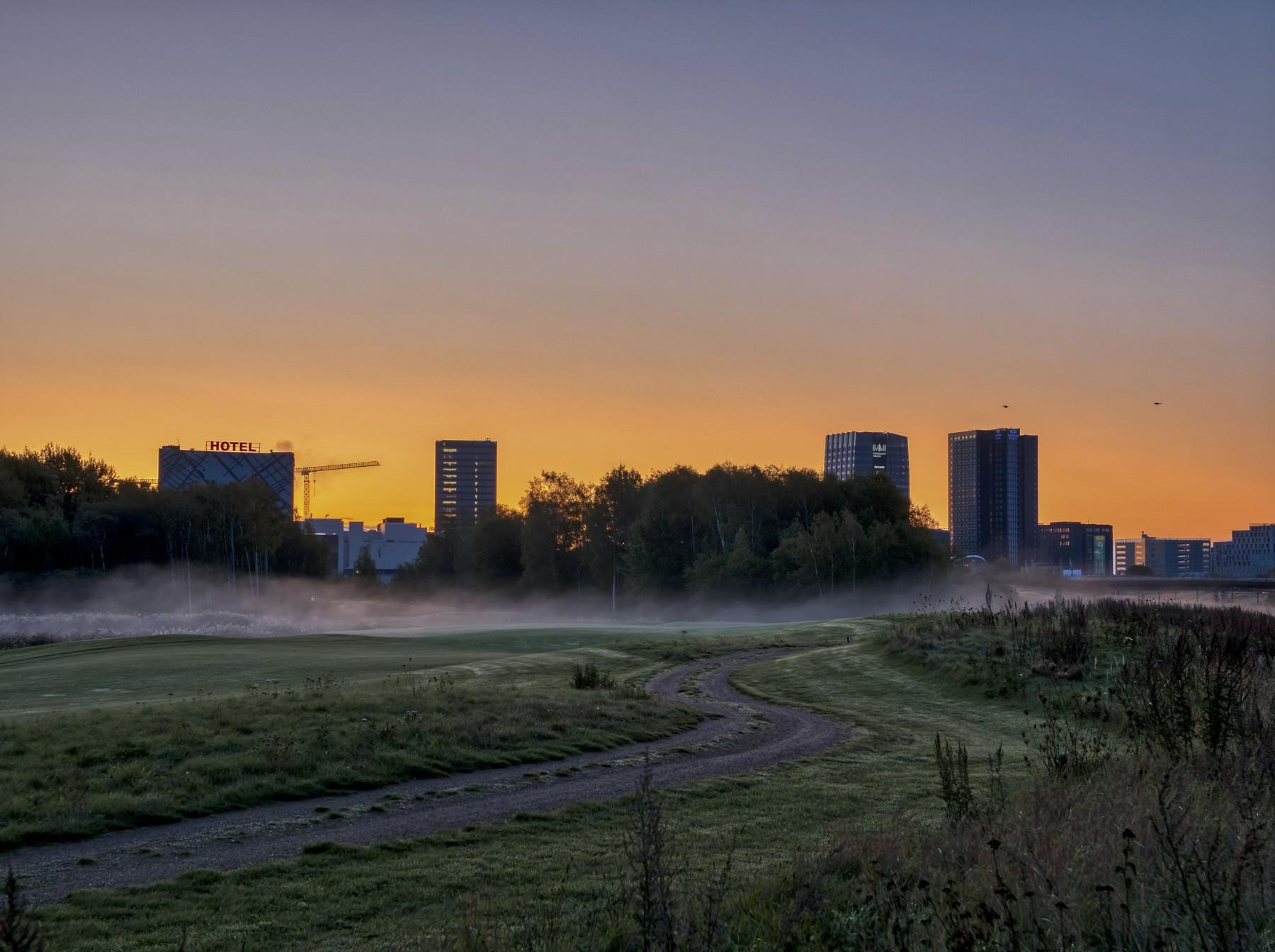 Mosekonen brygger med Ørestad i baggrunden