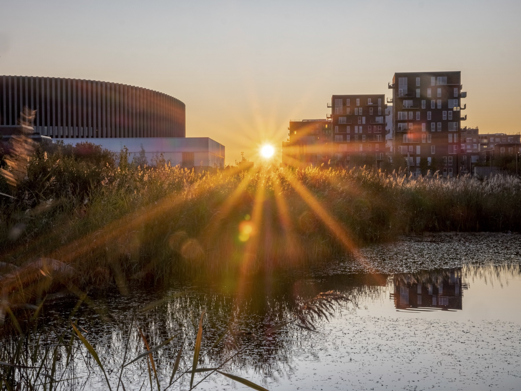 Solen står op bag Kalvebod Fælled Skole