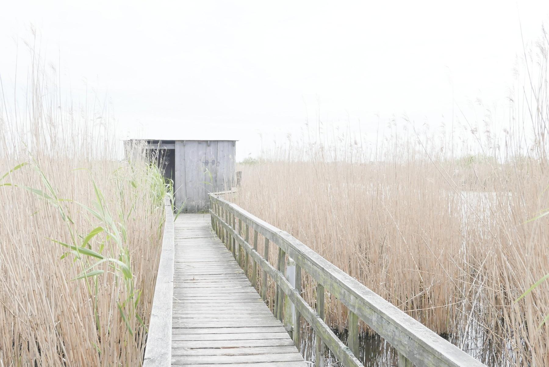 Foto af bygning taget med Lumix LX-100 med high key filter