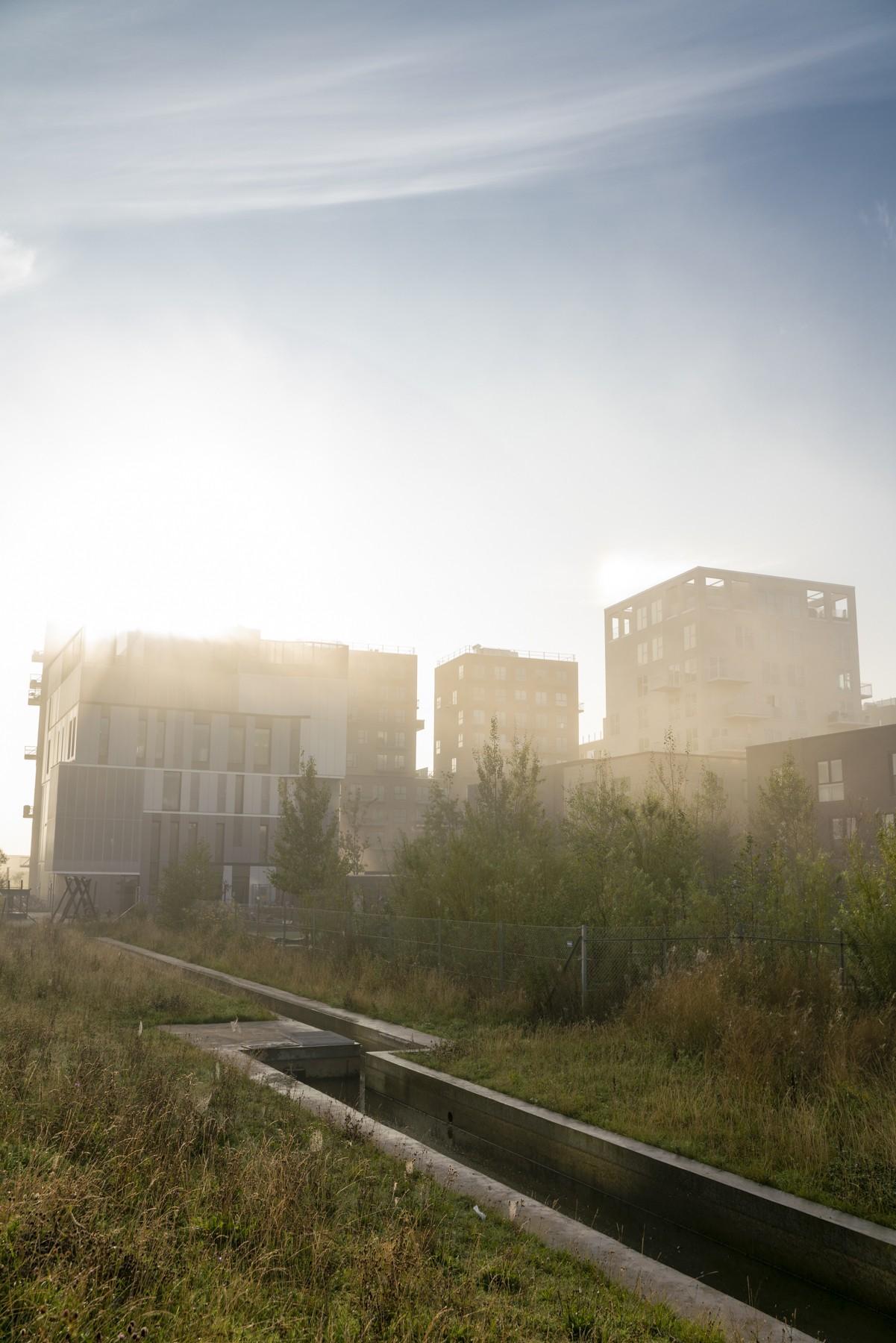 Arenakvarteret i Ørestad