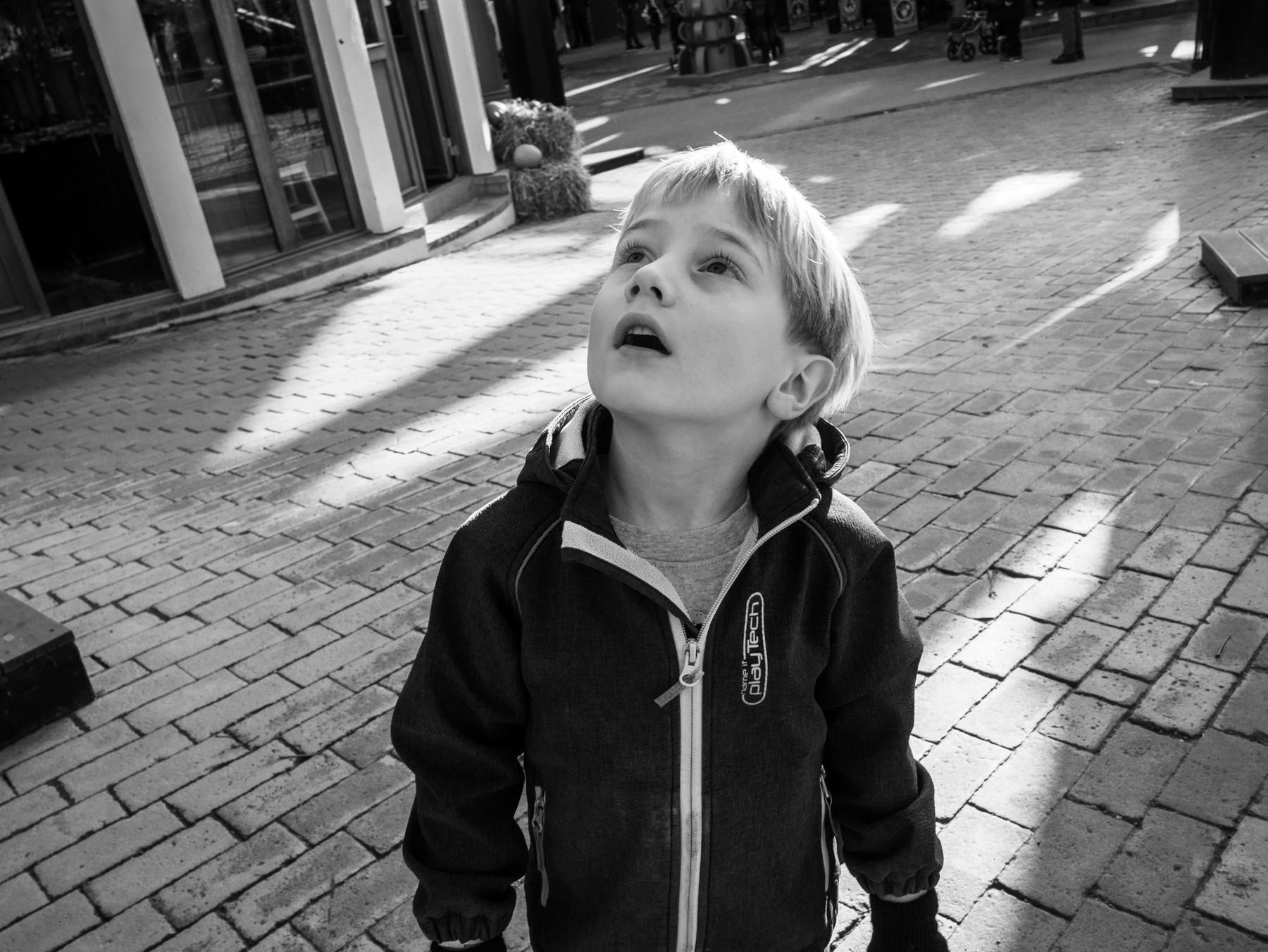 Felix kigger på menneskerne i forlystelserne i Tivoli
