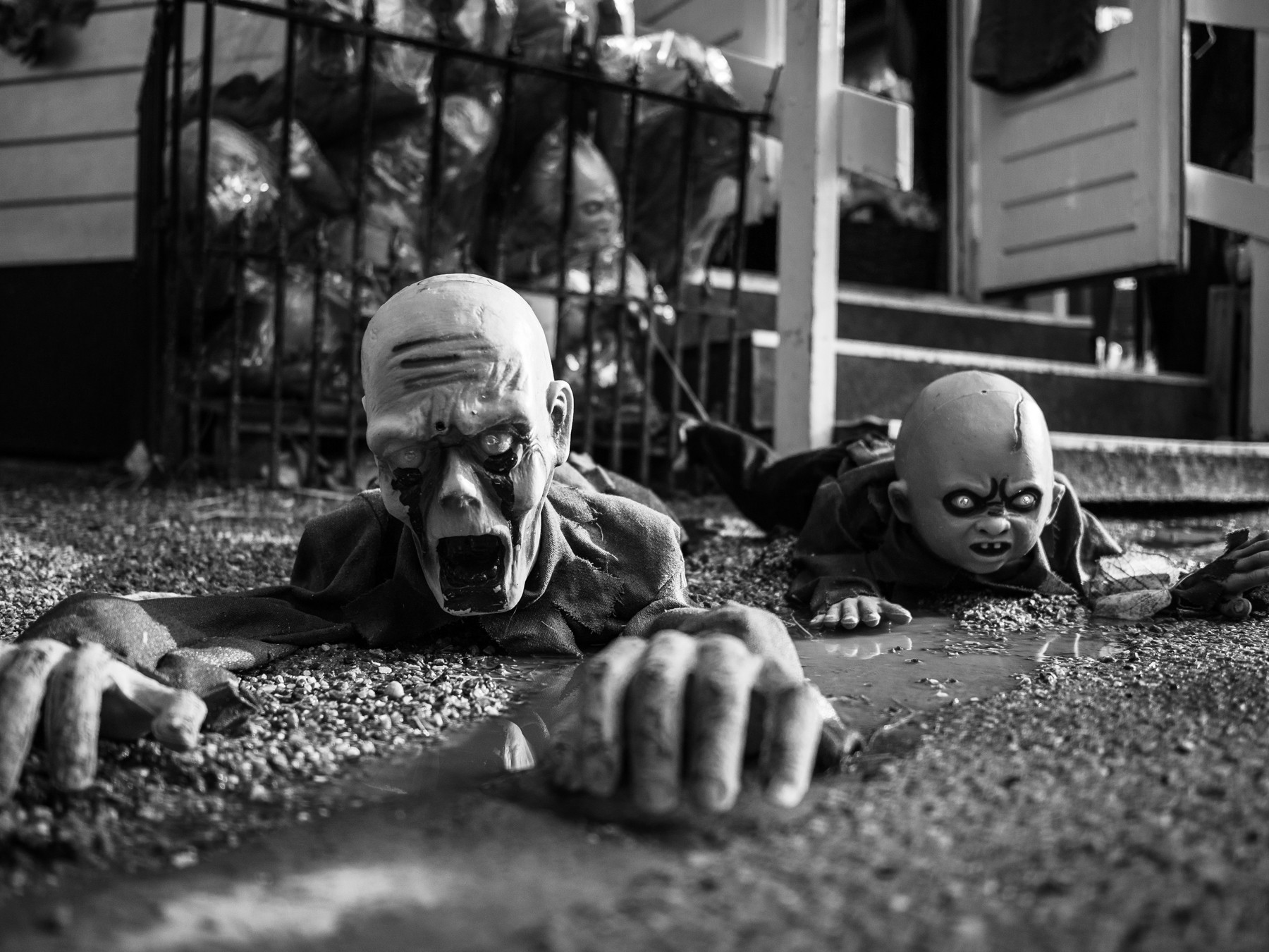Zombier i Tivoli, Halloween