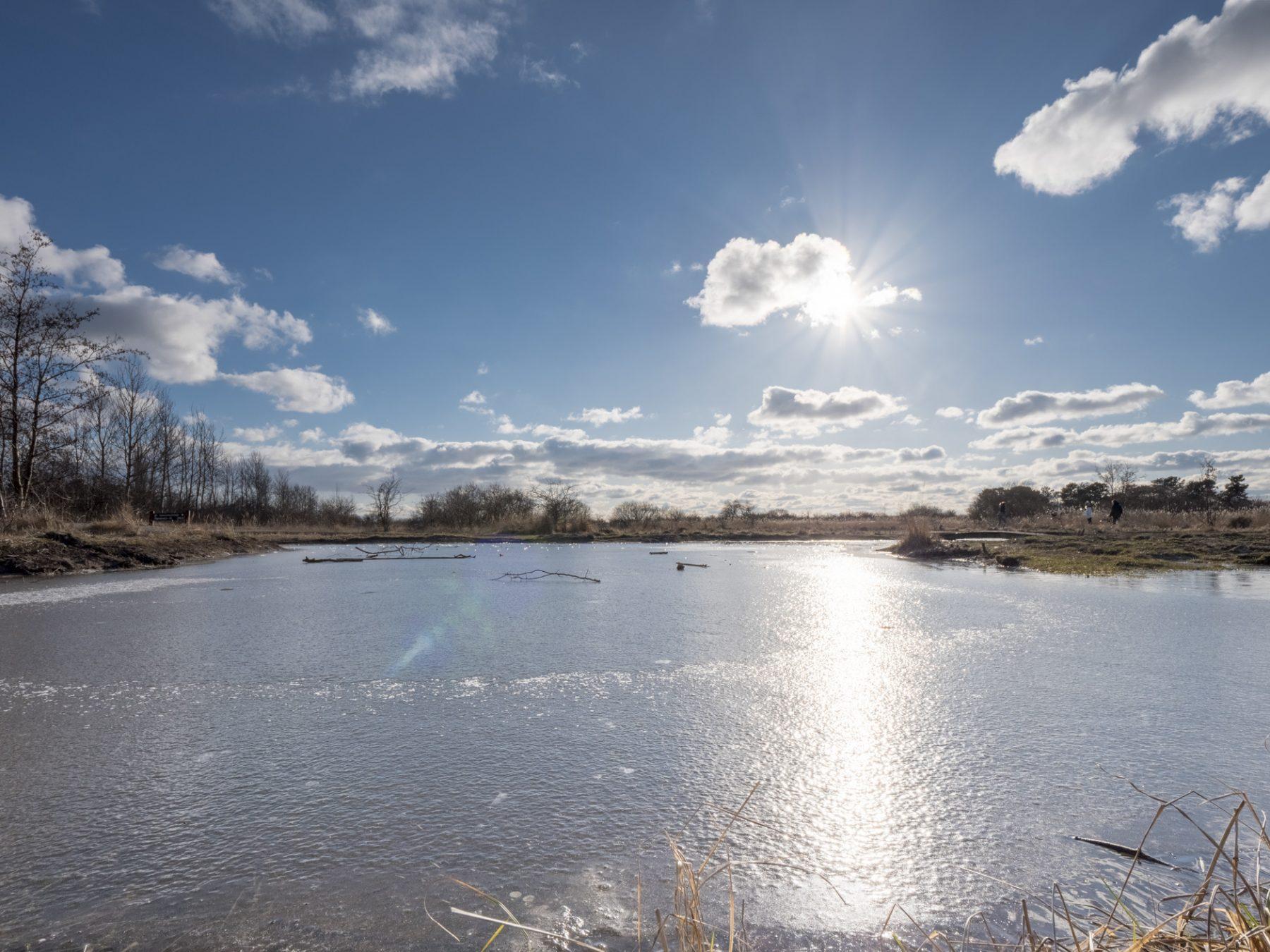 Landskabsfotografering: En frossen sø ved Kalvebod Fælled