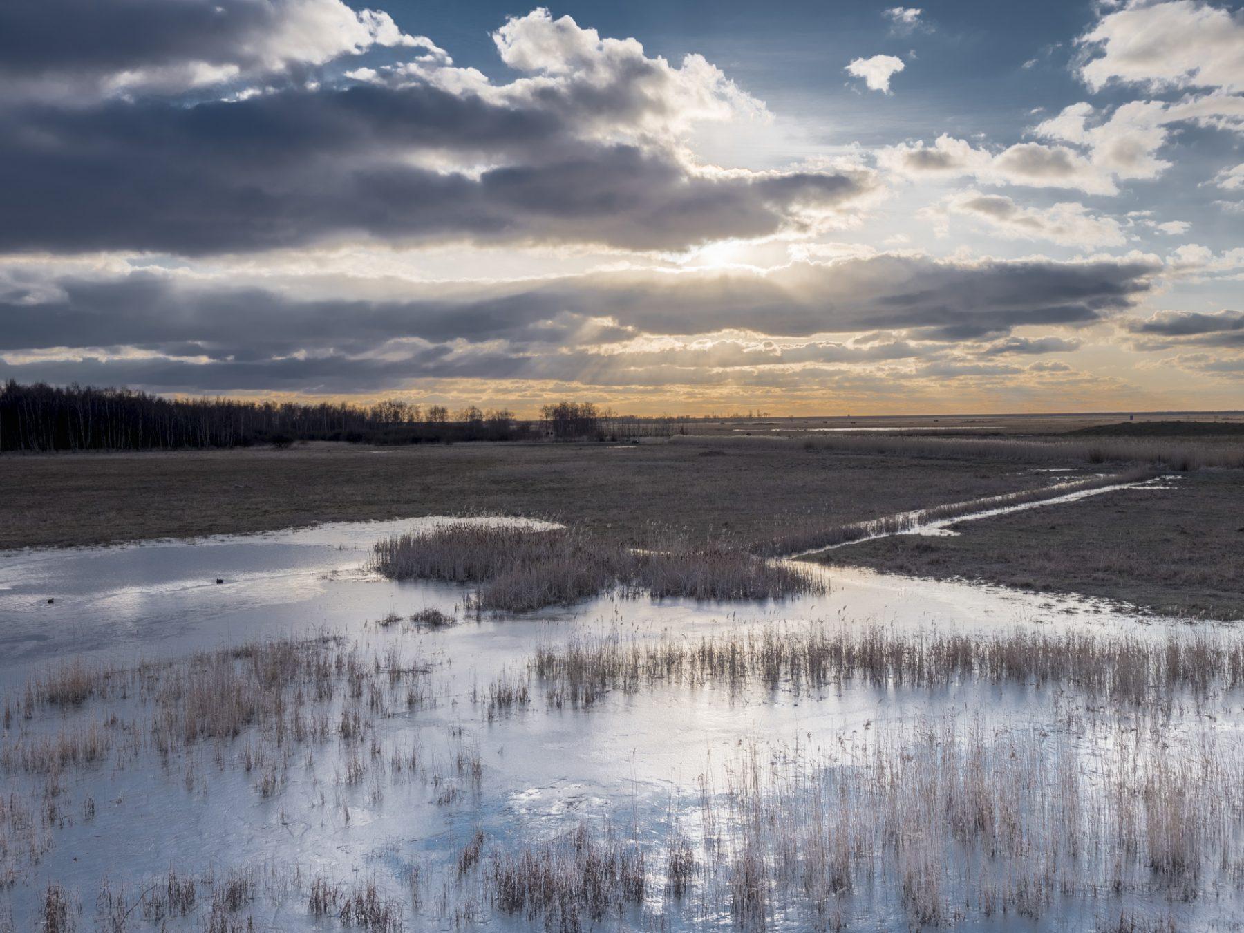 Landskabsfotografering: Kalvebod Fælled - en frossen sø og en flot himmel