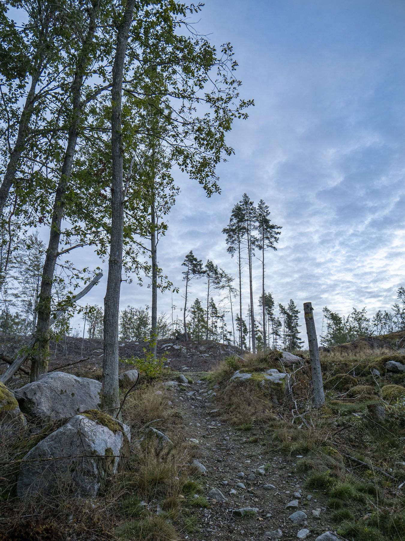 Lerjevallen, Skåne