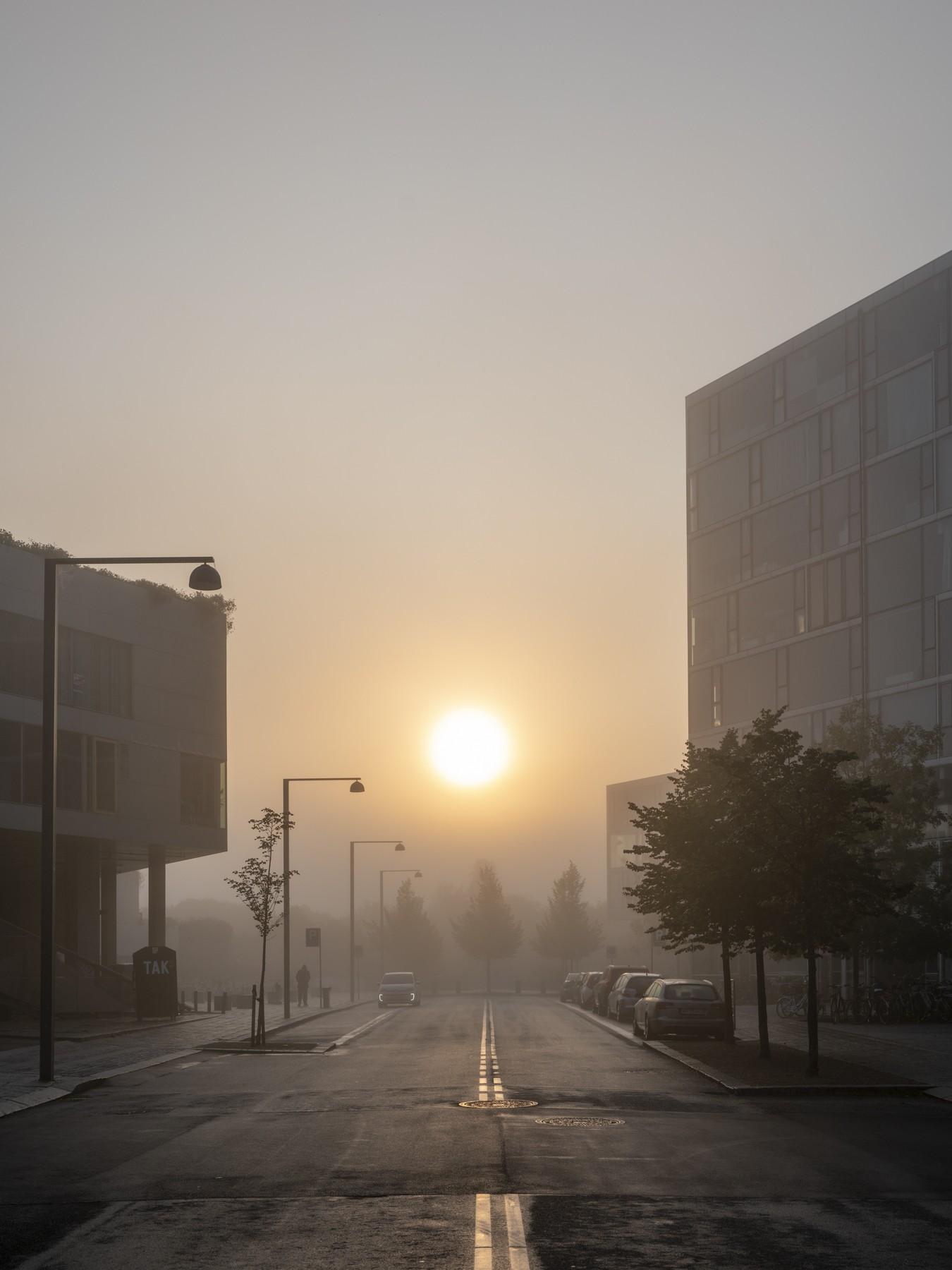 Ørestad C indhyllet i tåge og morgensol