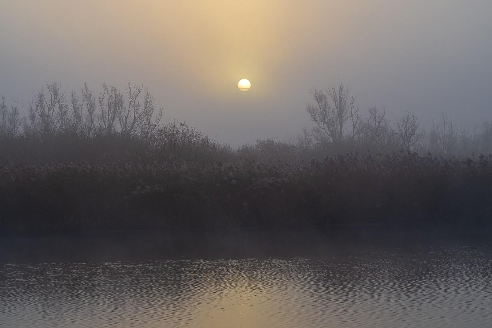 Solopgang og tåge ved Rostock an der Warnow