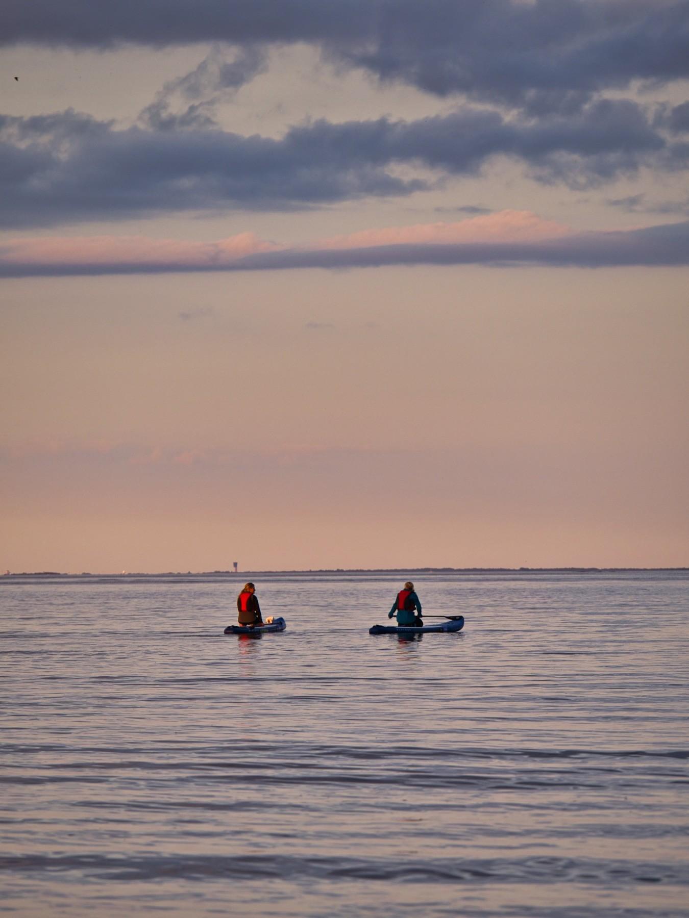 Paddleboardere ved Mosede Havn