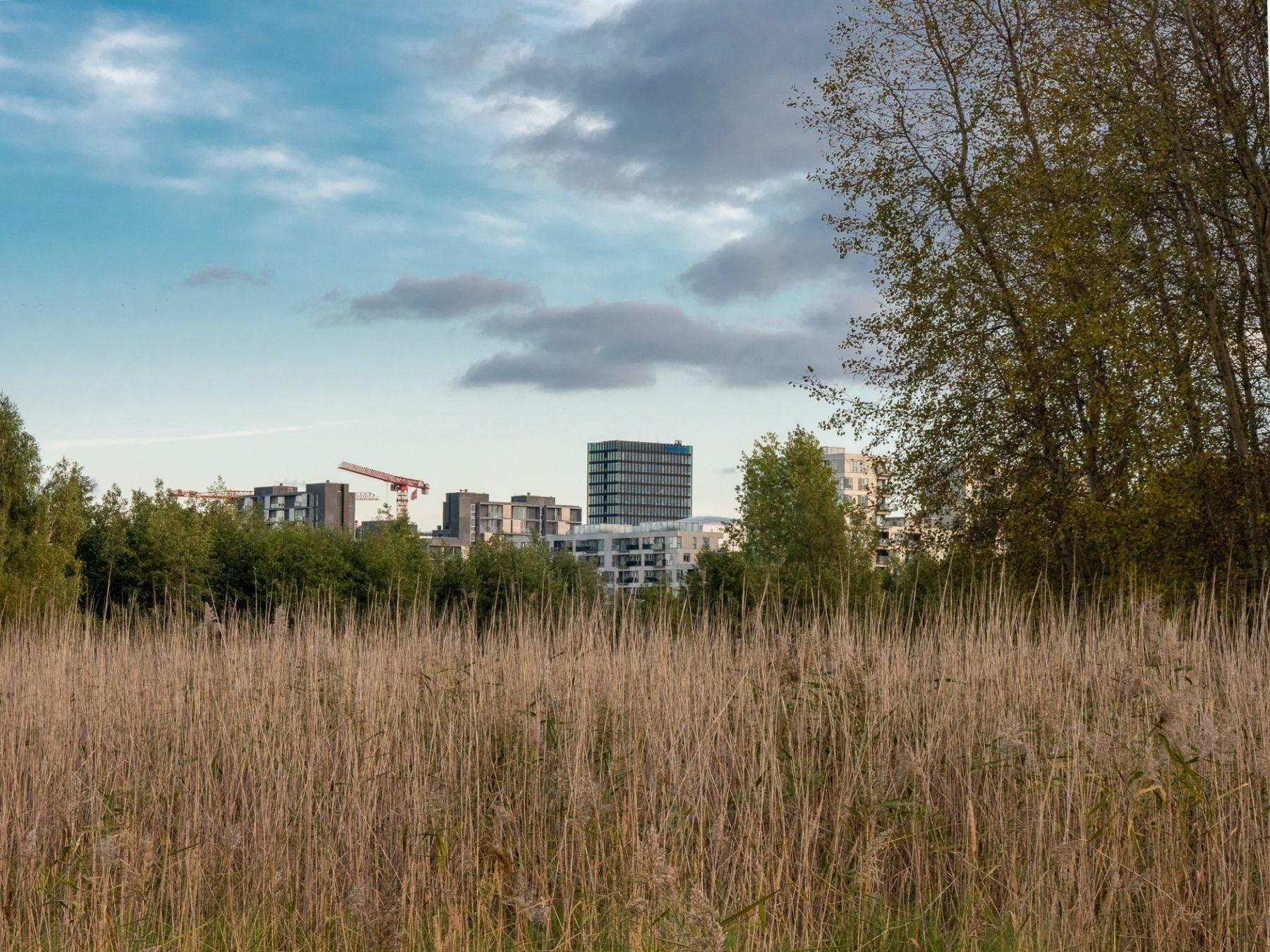 Ørestad, efterår 2019