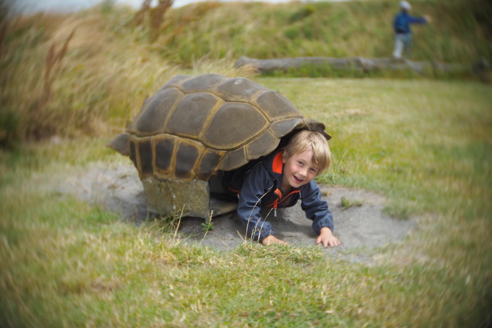 Felix som skildpadde, fotograferet med et SLR Magic Toy Lens