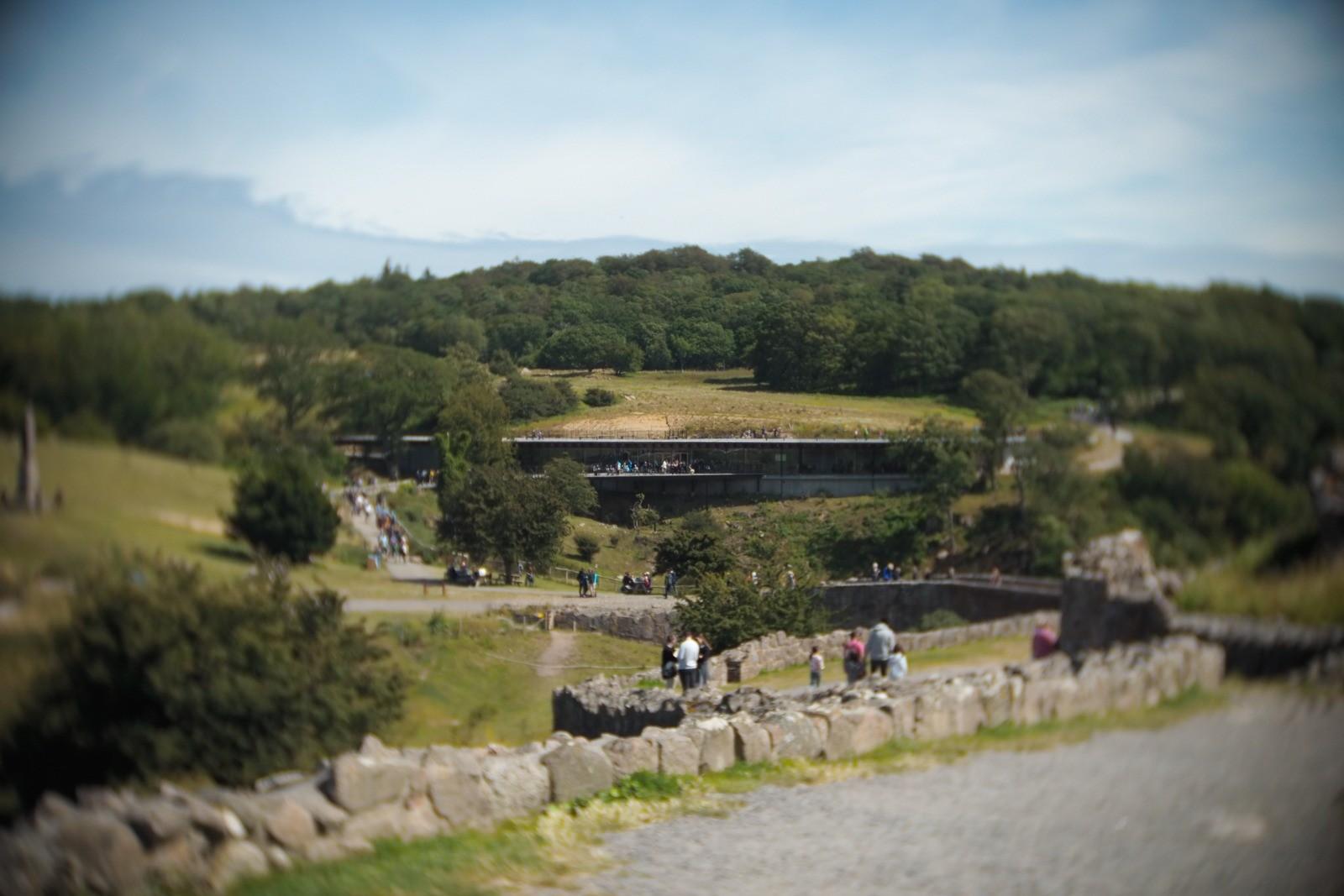 Hammershus besøgscenter, Bornholm, fotograferet med et SLR Magic Toy Lens