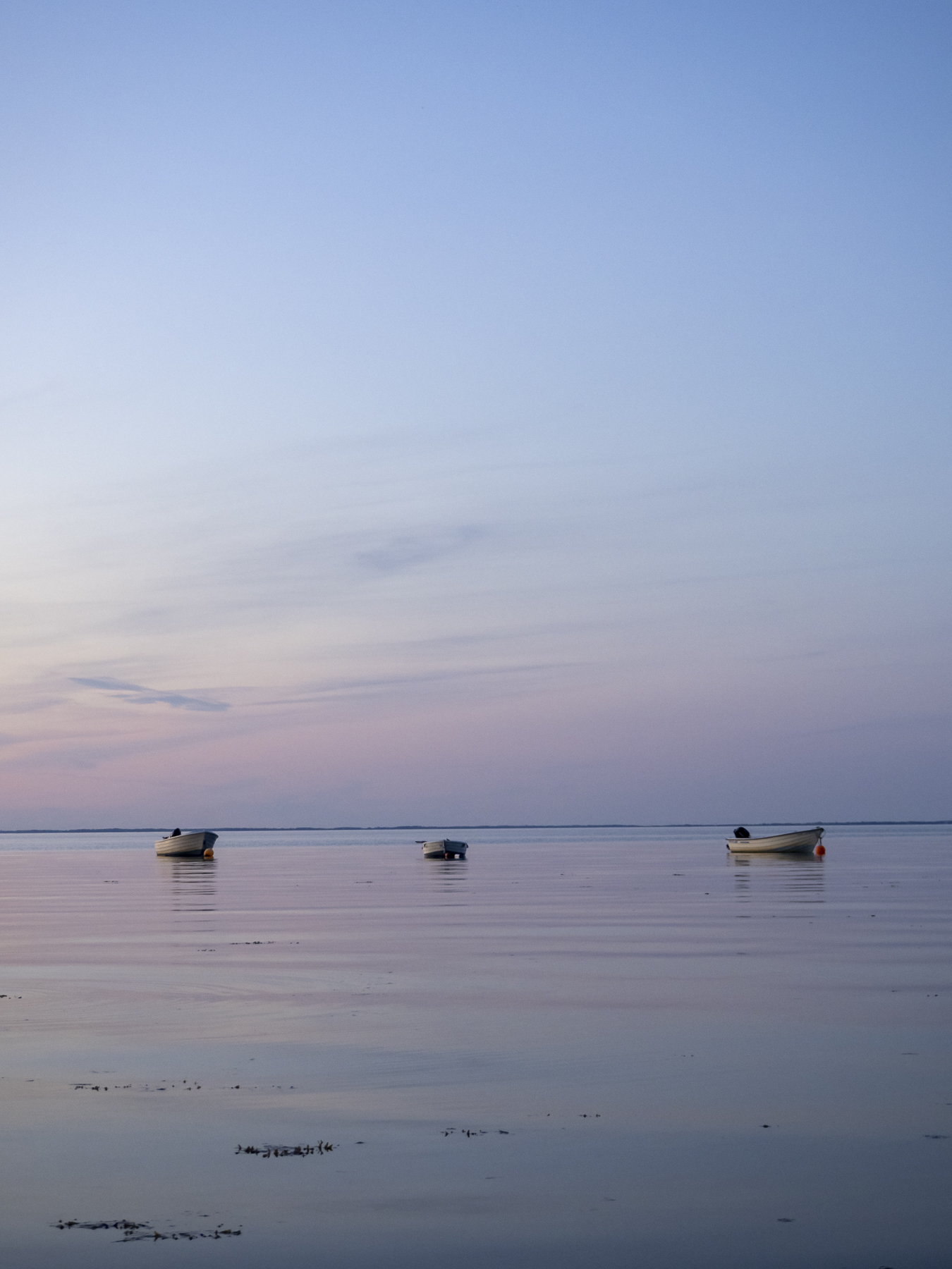 Strand på Tuse Næs