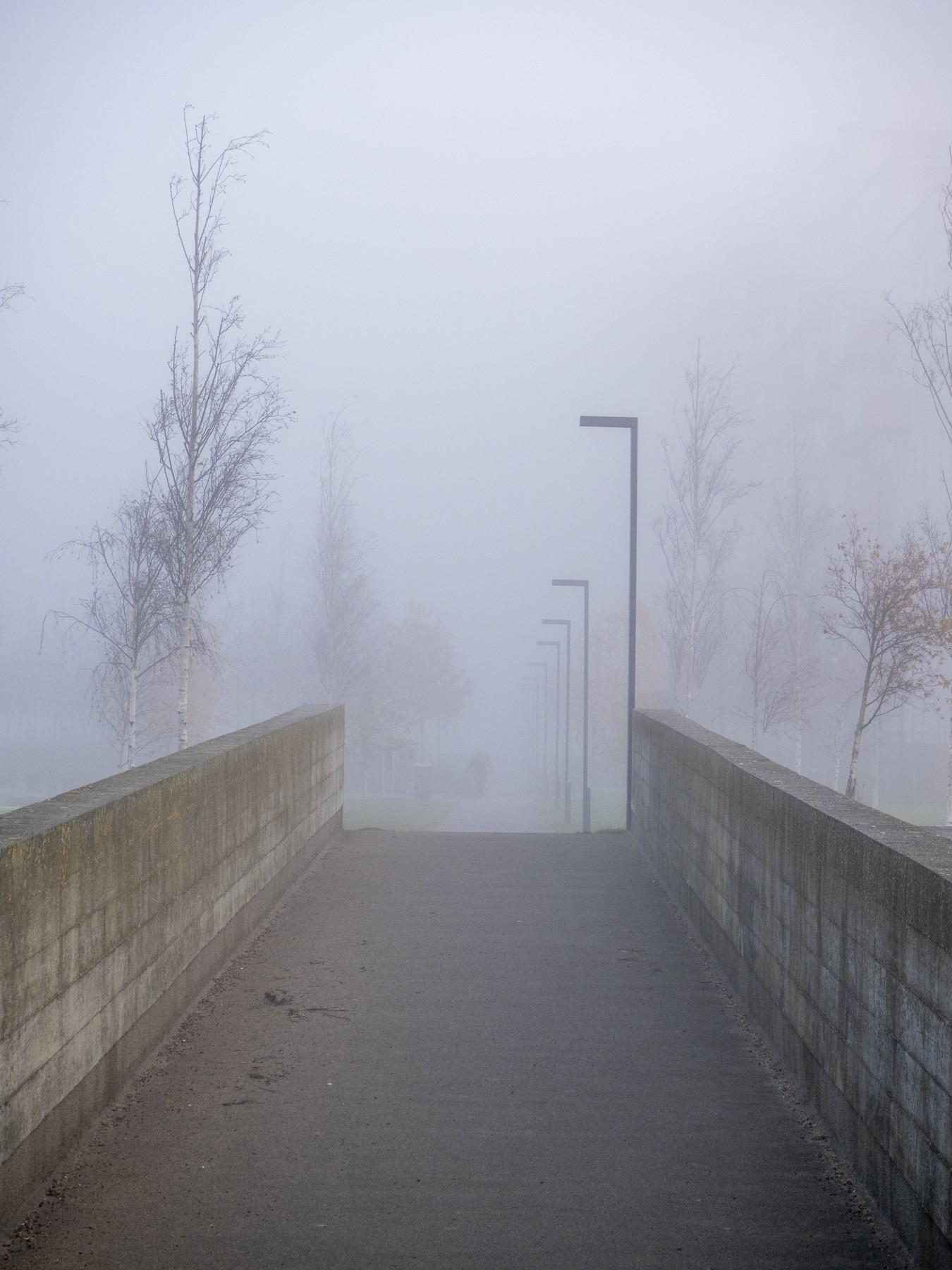 Ørestad og Kalvebod Fælled i tyk tåge