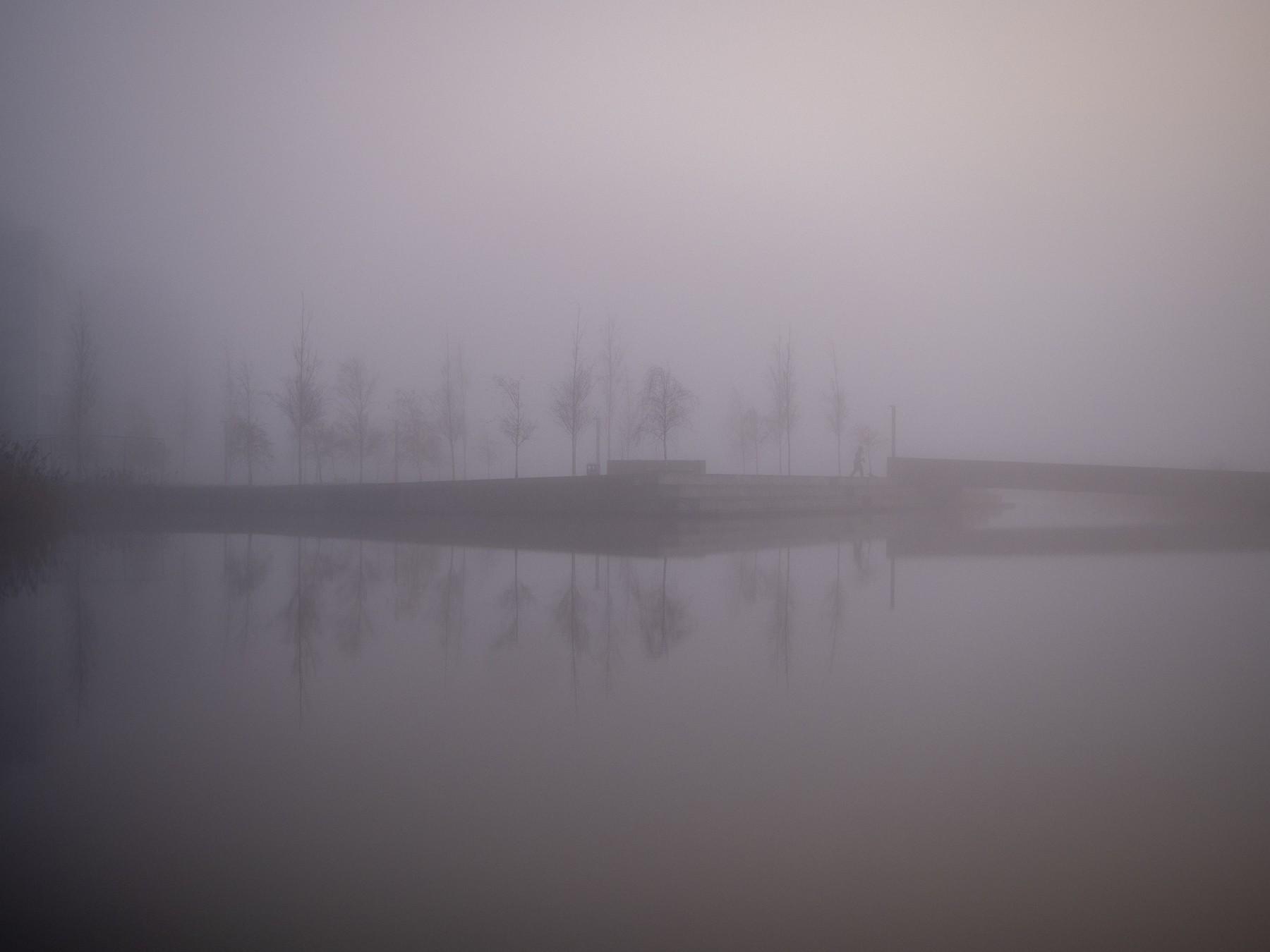 Kalvebod Fælled i tyk tåge alt