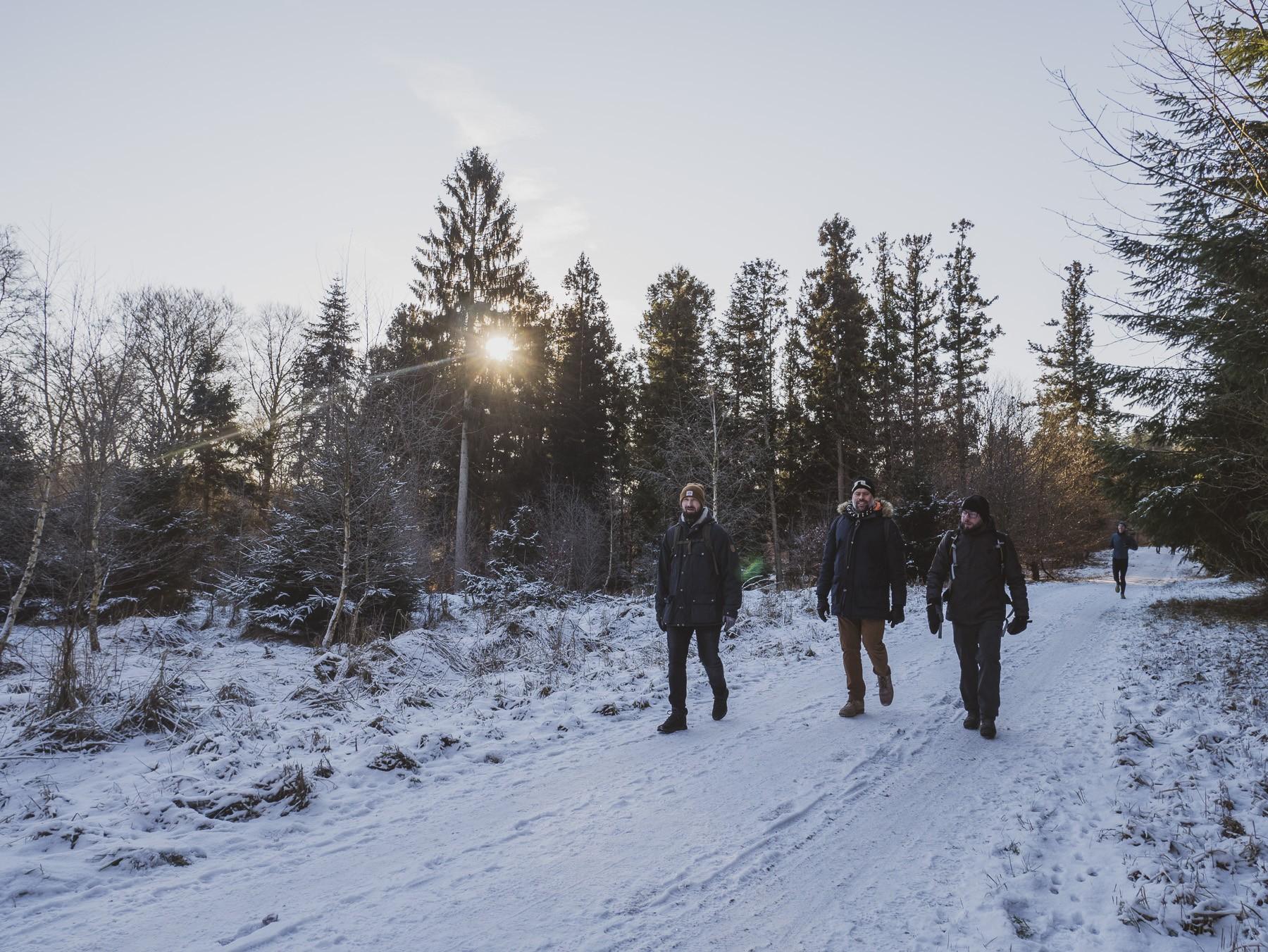 Vandreklubben i skoven ved Farum Søsti