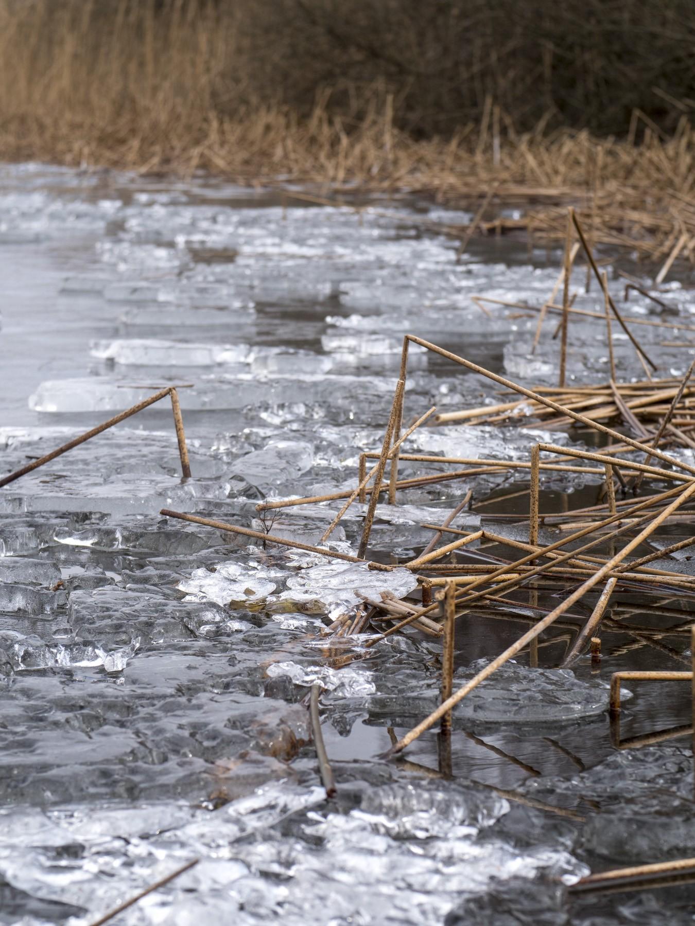 Is på Bastrup Sø