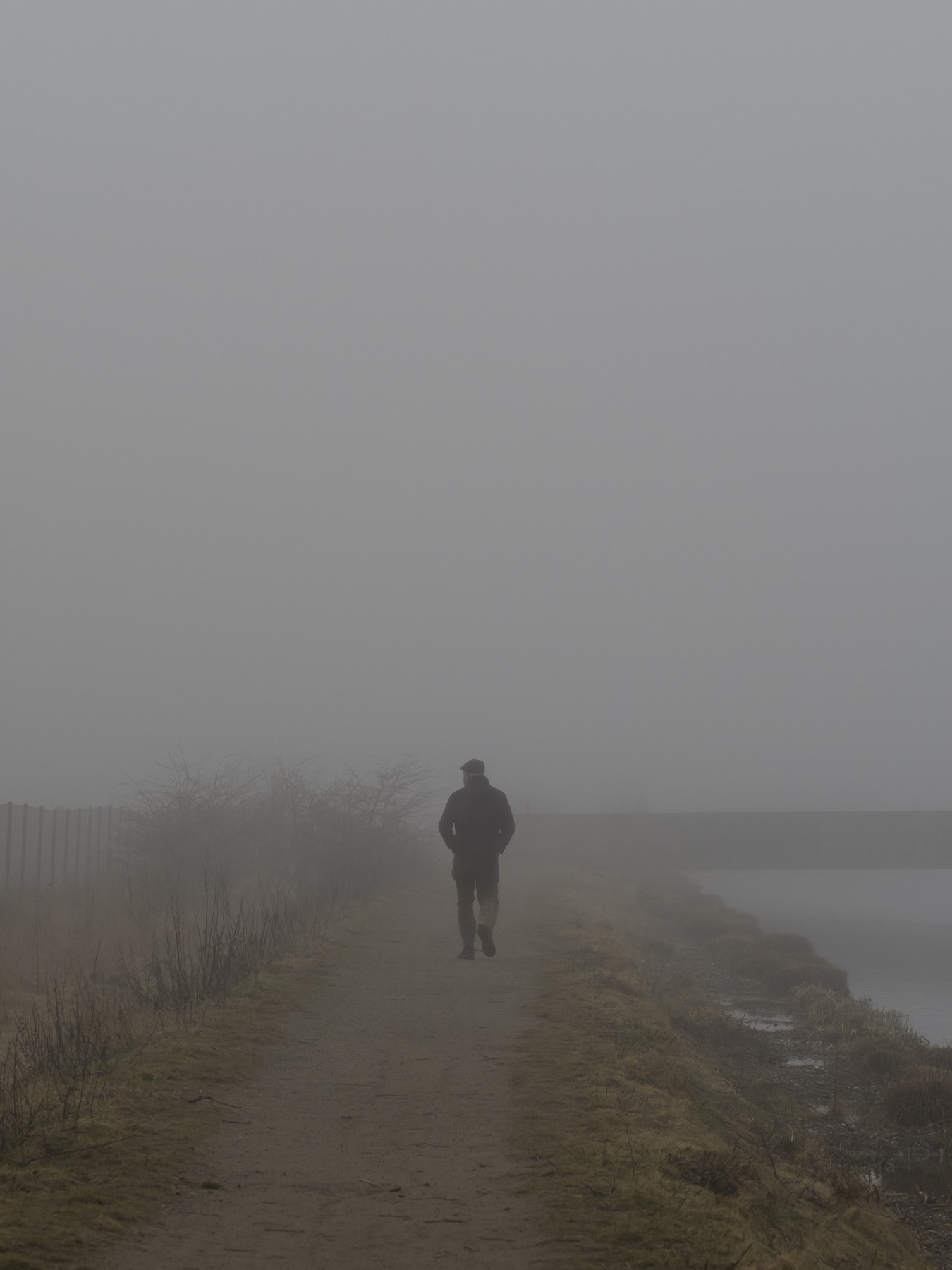 Ørestad: Spidsen ud mod Kalvebod Fælled i tyk tåge