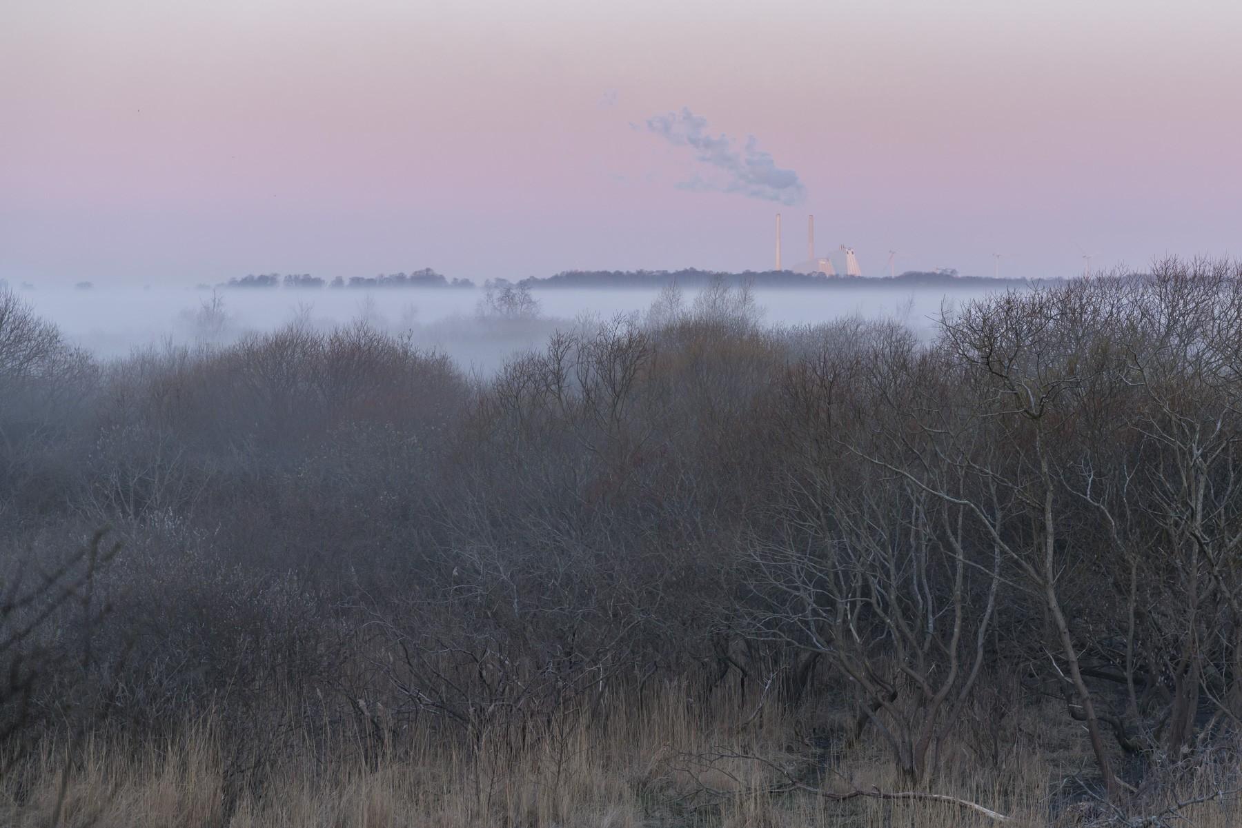 Avedøreværket og Naturpark Amager i tåget farveeksplosion
