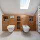 bathroom attic design