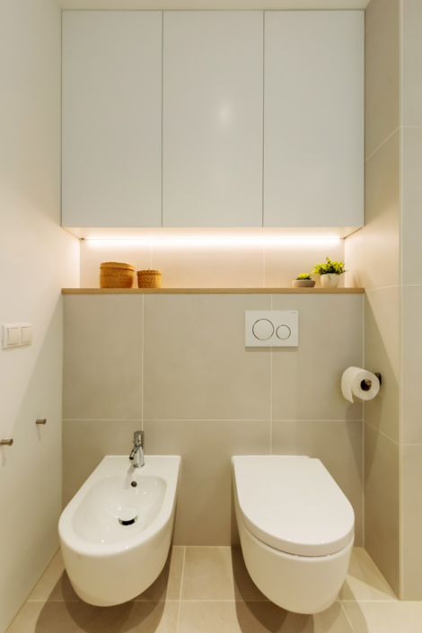 bathroom design toilet bidet