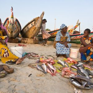 Tous Ensemble Dakar Biënnale (2010) - Fish Market On The Beach
