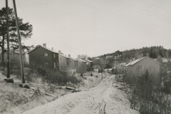 19426