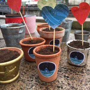 Planter håb og frø