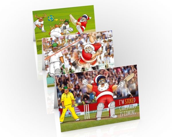 cricket christmas cards mixed 3 card pack
