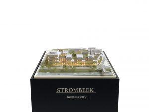 stombeek-licht-2-scaled
