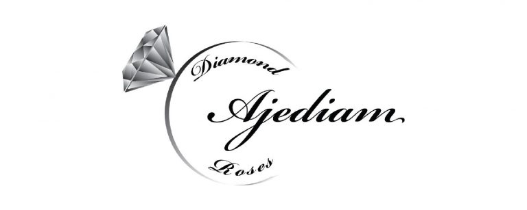 ajediam_Tekengebied-1