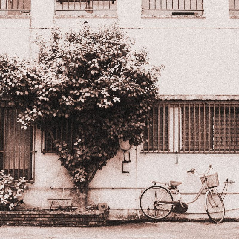 Cykeln på bakgården - Studio Caro-lines