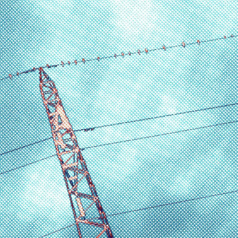Fåglar på tråd #1 - Studio Caro-lines