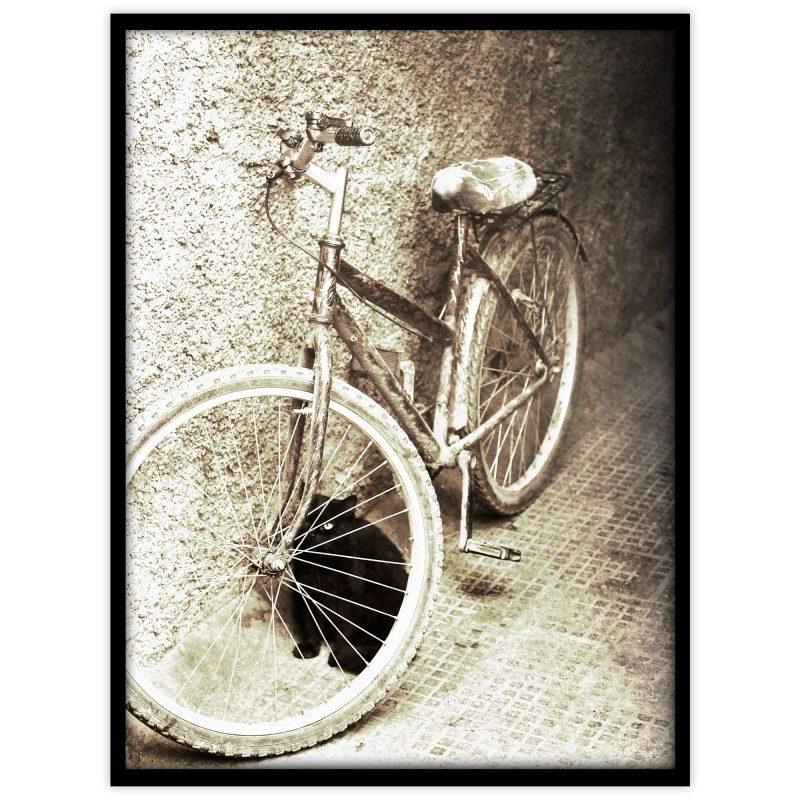 Cykel och svart katt - Studio Caro-lines