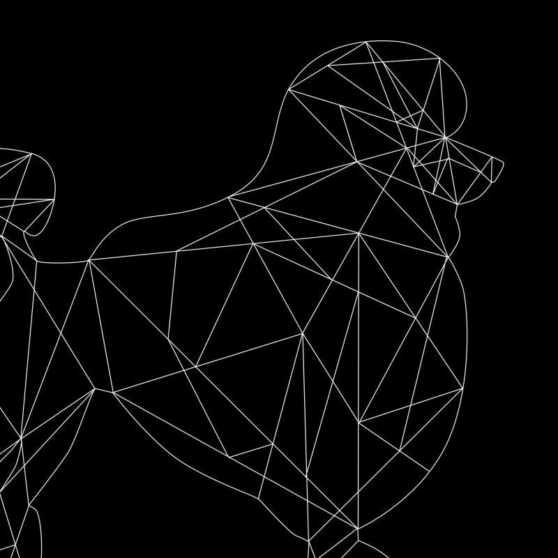 Pudel (svart) - Studio Caro-lines
