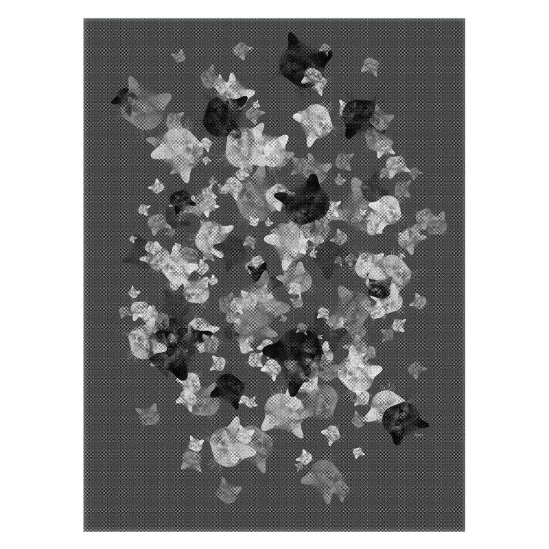 Katter i gråskala - Studio Caro-lines
