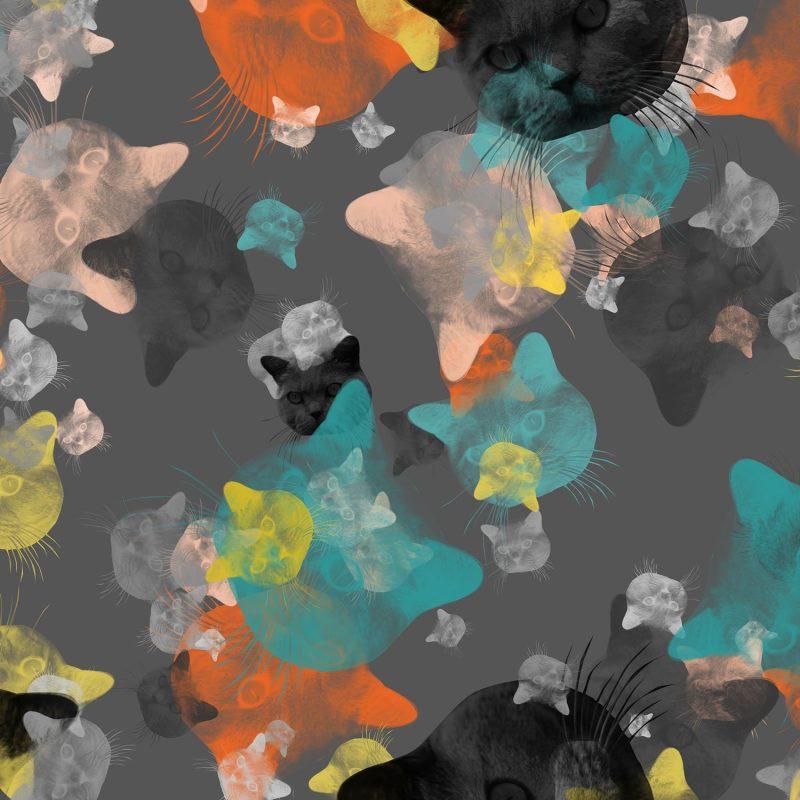 Katter i färg - Studio Caro-lines