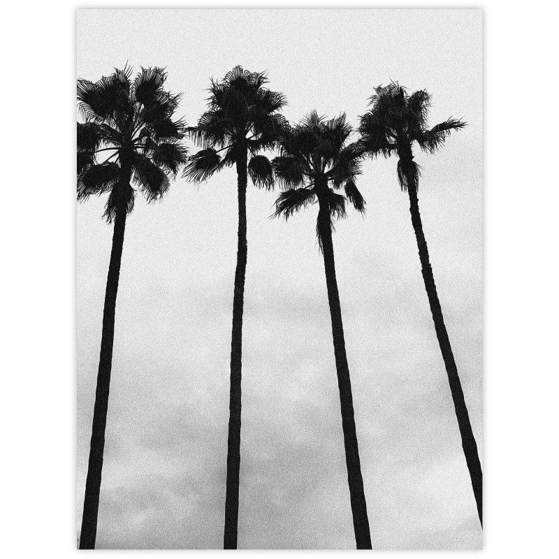 Långa palmer - Studio Caro-lines